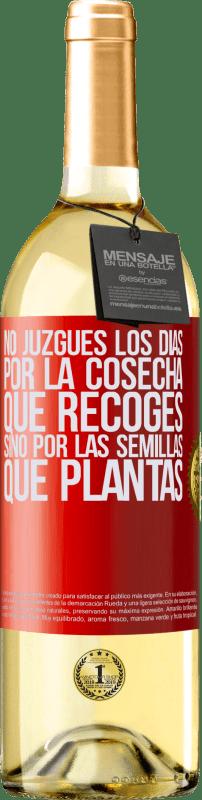 24,95 € Envío gratis | Vino Blanco Edición WHITE No juzgues los días por la cosecha que recoges, sino por las semillas que plantas Etiqueta Roja. Etiqueta personalizable Vino joven Cosecha 2020 Verdejo