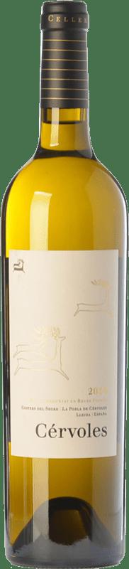 26,95 € Free Shipping   White wine Cérvoles Blanc Crianza D.O. Costers del Segre Catalonia Spain Macabeo, Chardonnay Magnum Bottle 1,5 L