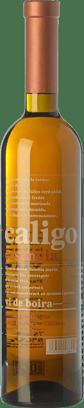 48,95 € Envío gratis | Vino dulce DG Caligo Essència D.O. Penedès Cataluña España Chardonnay Botella 75 cl