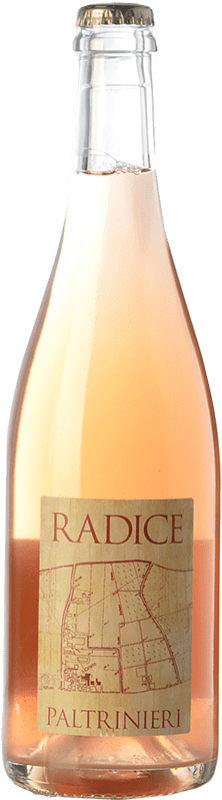 12,95 € | Red wine Paltrinieri Lambrusco Radice D.O.C. Modena Emilia-Romagna Italy Lambrusco di Sorbara Bottle 75 cl