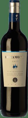 Yllera Bracamonte Tempranillo Ribera del Duero Roble 75 cl