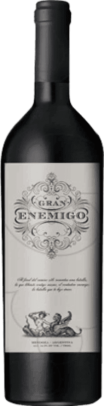 131,95 € Free Shipping | Red wine Aleanna Gran Enemigo El Cepillo Argentina Cabernet Franc, Malbec Bottle 75 cl