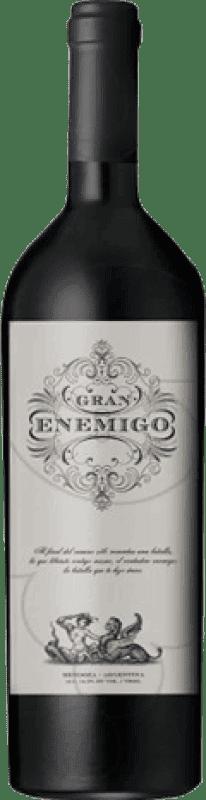 131,95 € Envío gratis | Vino tinto Aleanna Gran Enemigo El Cepillo Argentina Cabernet Franc, Malbec Botella 75 cl