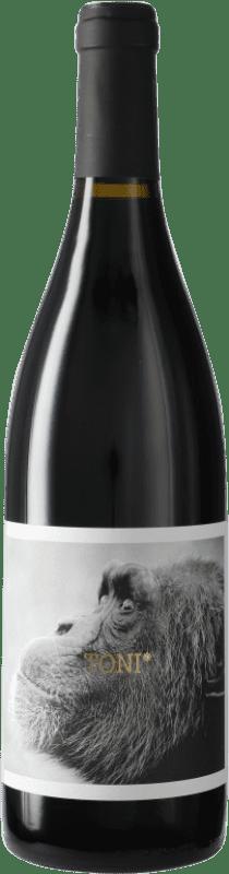 8,95 € Envío gratis | Vino tinto La Vinyeta Els Monos Toni Negre D.O. Empordà Cataluña España Botella 75 cl